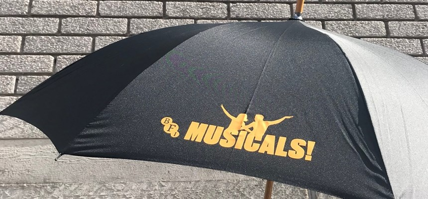 Singin' in the Rain Umbrella Flash Mob